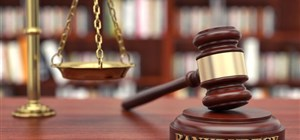 Who Are the Parties Involved in a Bankruptcy Case?
